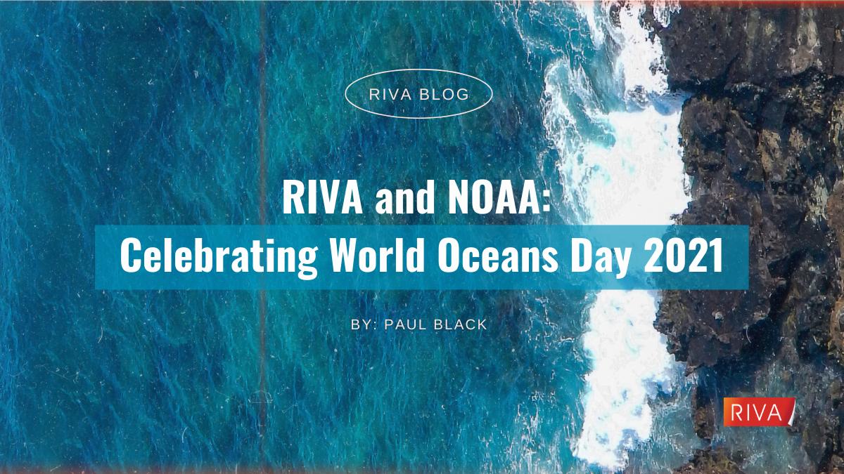 Ocean Conservation for World Oceans Day